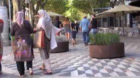Les jardineres es retiraran després actes ajornats de la Festa Major