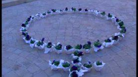Santpedor en flor d'hivern s'estrena amb propostes en 10 espais