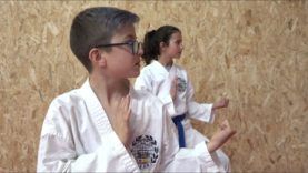 Moguts per la base – Karate
